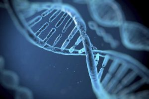 Cellular Regeneration