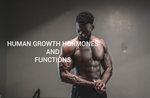 Human Growth Hormones and Functions