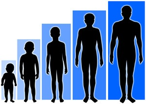 Age-Related Decline in Growth Hormone